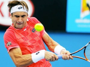 david ferrer focus